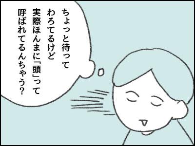 20170215_06.jpg