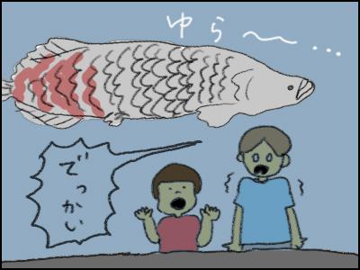 20170826_01.jpg