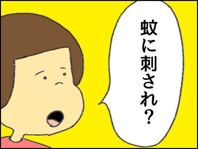 20171023_05.jpg